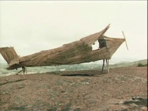 a bamboo plane